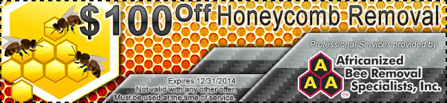 Honeycomb Removal