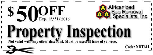AAA_Bee_Removal_PropertyInspection1